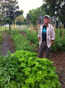 "(Photo taken of my friend Don gently tending the ""garden of hope."")"